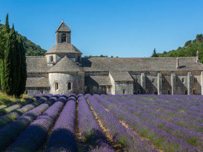 L'abbaye de Sénanque (84)